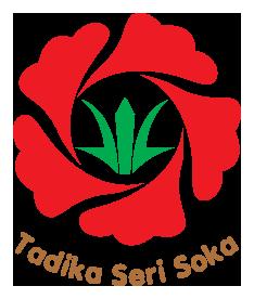 logo-TSS-3X